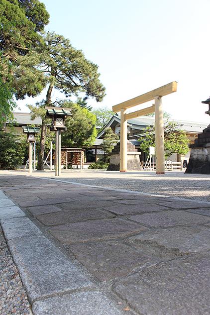亀甲石と飛鶴松